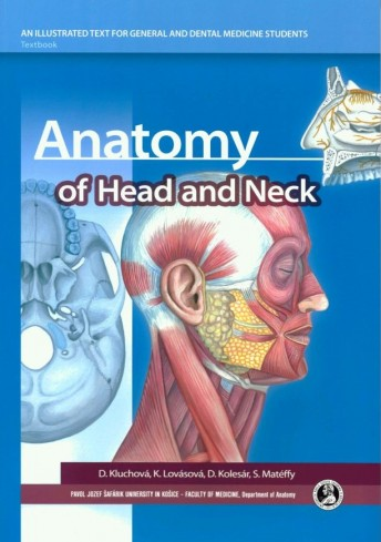 Anatomy of Head and Neck