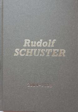 Rudolf Schuster: 2004 - 2018