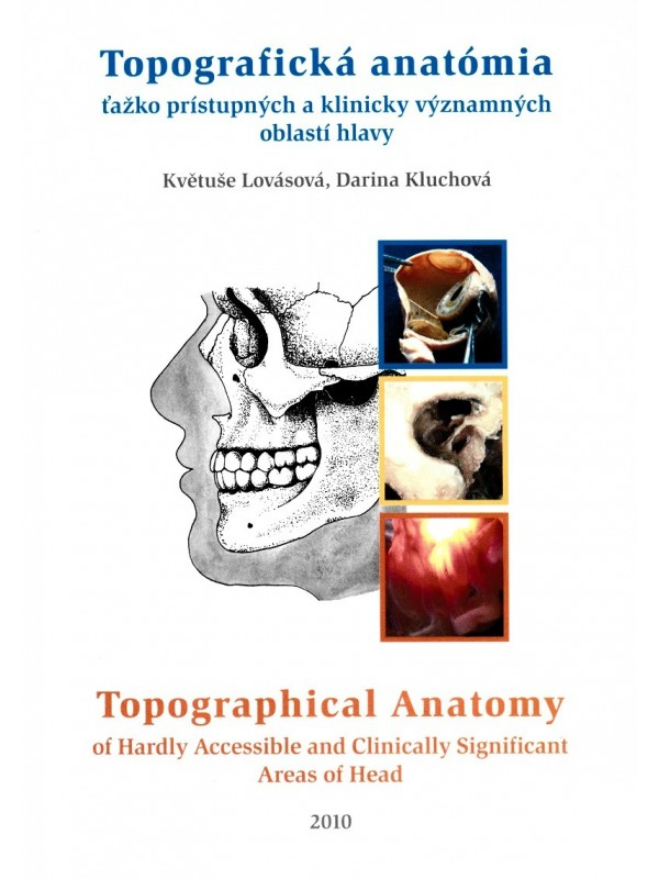 Topographical Anatomy of Hardly Accessible and Clinically Significant Areas of Head